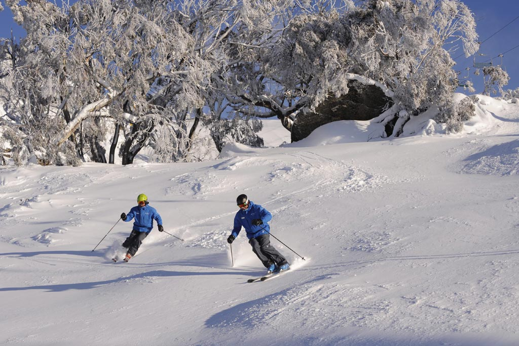 Snow tour Perisher - Port Stephens coaches