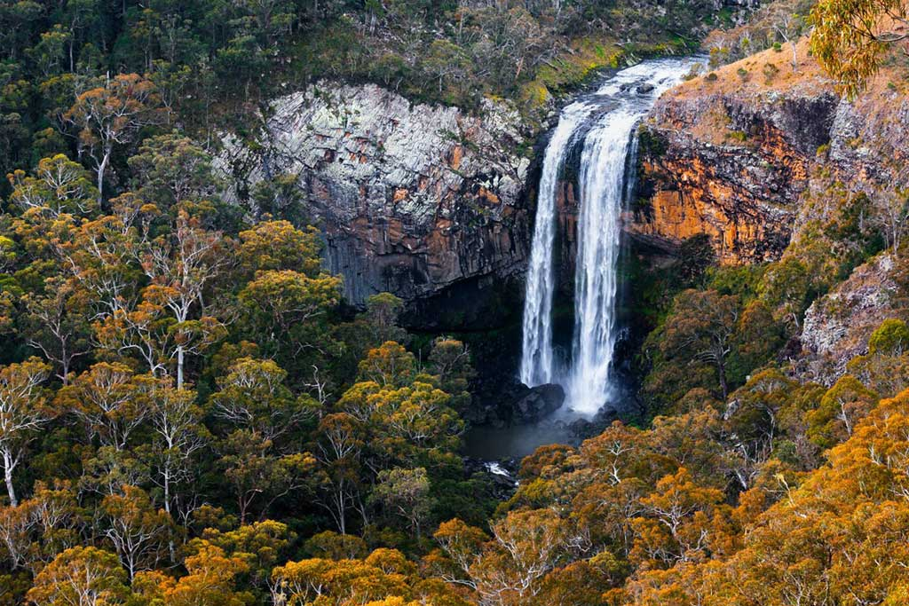 Port Stephens Coaches Waterfall Way tour