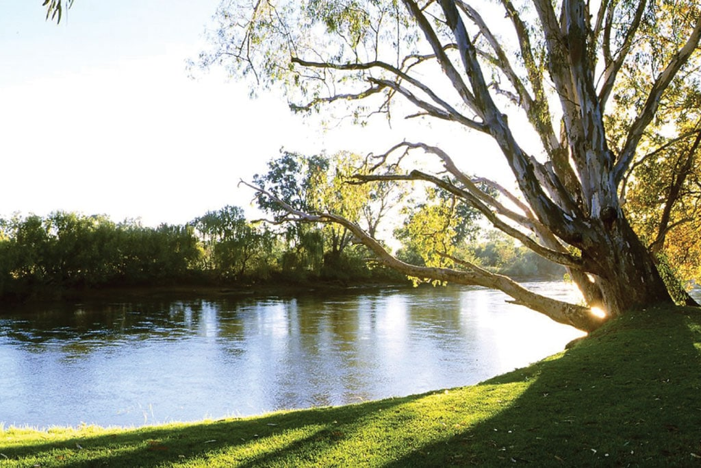 Murray River on the Bright in Autumn tour